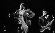 B.B. King, Milano, Rolling Stone