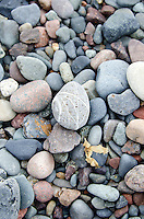 Rounded beach stones in shades of pink and grey at Raccoon Beach on Campobello Island.