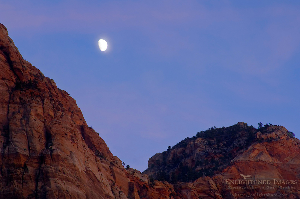 Moonrise at dusk over Bridge Mountain, Zion National Park, Utah