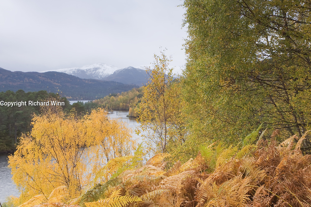 A break in the rain allowed this view to be photographed, showing the autumn colours.