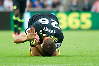 Football — 2016 / 2017 Premier League - Swansea vs Chelsea<br /> <br /> John Terry captain of Chelsea falls to his knees injured in the final minutes at the Liberty Stadium.<br /> <br /> pic colorsport/winston bynorth