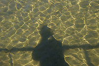 Shadows on river water