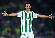 SEVILLE, SPAIN - OCTOBER 15:  Andres Guardado of Real Betis Balompie reacts during the La Liga match between Real Betis and Valencia at Estadio Benito Villamarin on October 15 in Seville.  (Photo by Aitor Alcalde Colomer/Getty Images)