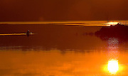 A member of the Illinois River Oarsmen rows in the light of the rising sun on the Illinois River. ©David Zalaznik
