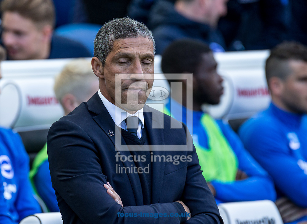 Chris Hughton manager of Brighton &amp; Hove Albion during the Sky Bet Championship match at the American Express Community Stadium, Brighton and Hove<br /> Picture by Liam McAvoy/Focus Images Ltd 07413 543156<br /> 01/04/2017