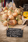 Fresh, local, organic produce at the Wilsonville, Oregon Farmers Market.
