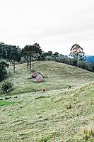 Paisagem rural em Rancho Queimado. Rancho Queimado, Santa Catarina, Brasil. / Rural landscape in Rancho Queimado. Rancho Queimado, Santa Catarina, Brazil.