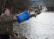Bill O'Sullivan of Mount Hope releases trout into the Neversink River in Cuddebackville on Wednesday, March 30, 2011. O'Sullivan and other members of the Orarnge County Federation of Sportsmen helped release trout from the Department of Environmental Conservation's Catskill Hatchery in Livingston Manor at different locations on the river. Trout season in New York opens on Friday, April 1.