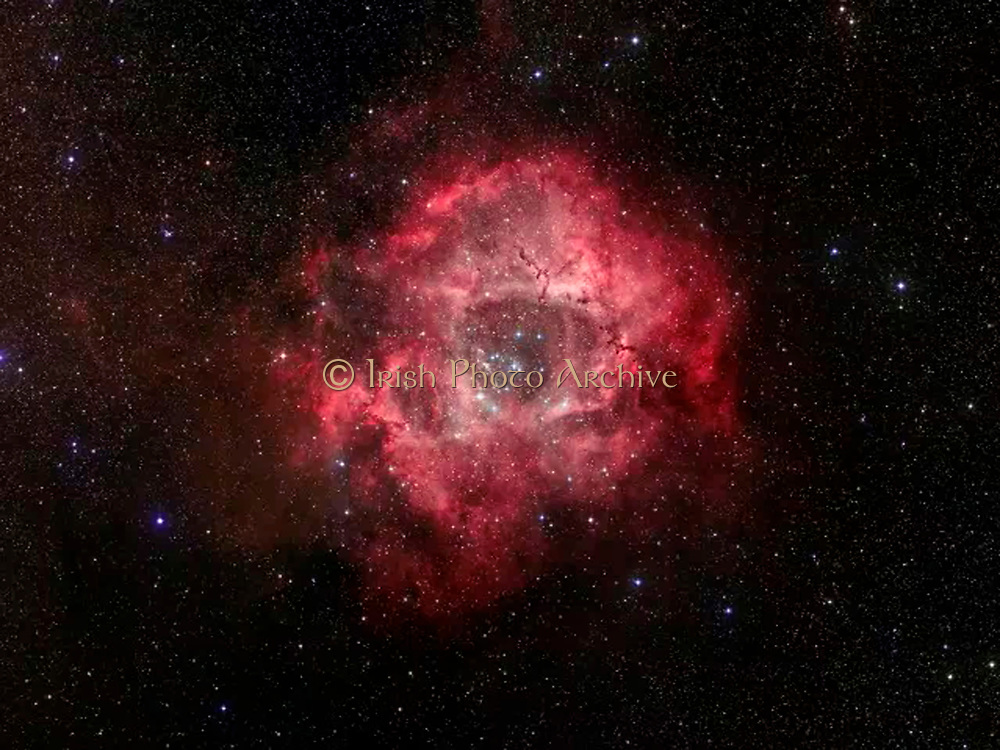 The Rosette nebula, a turbulent star-forming region located 5,000 light-years away in the constellation Monoceros. Spitzer Space Telescope.