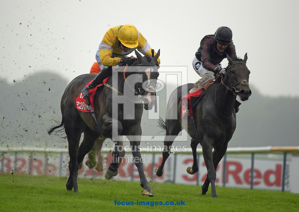 A preview of this weekend's favourites in UK racing.<br /> Picture by Martin Lynch/Focus Images Ltd 07501333150<br /> 13/10/2016<br /> <br /> <br /> Original Caption:<br /> Centre is Quiet Reflection with D Costello wins from right The Tin Man 2nd in Sprint Cup Stakes at Haydock 3-9-16.
