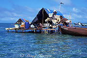 fishermen drying catch at seasonal fishing camp <br /> on barrier reef during grouper spawning aggregation, 1988<br /> Caye Glory ( Emily ), Belize, Central America <br /> ( Caribbean Sea )