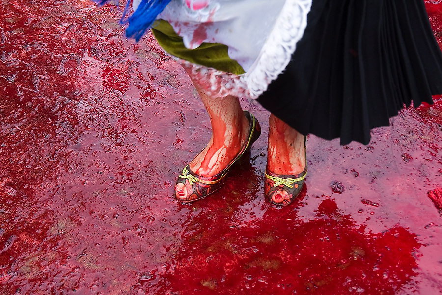 A woman dances in a pool of blood at the ritual killing of a bull in Paracho, Michoacan state, Mexico on August 8, 2008 during the annual Feria Internacional de la Guitarra. The bull was slaughtered and used to stock the town's meat locker while butchers served beef stew to the public to conclude the parade held by the town's market vendors.