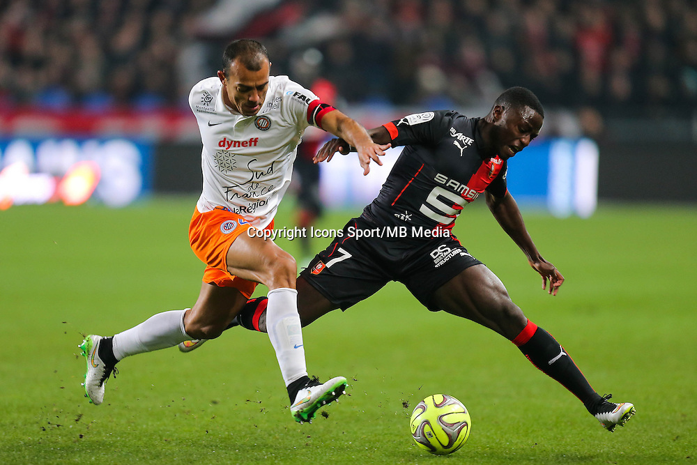 HILTON / Paul Georges NTEP - 06.12.2014 - Rennes / Montpellier - 17eme journee de Ligue 1 -<br />