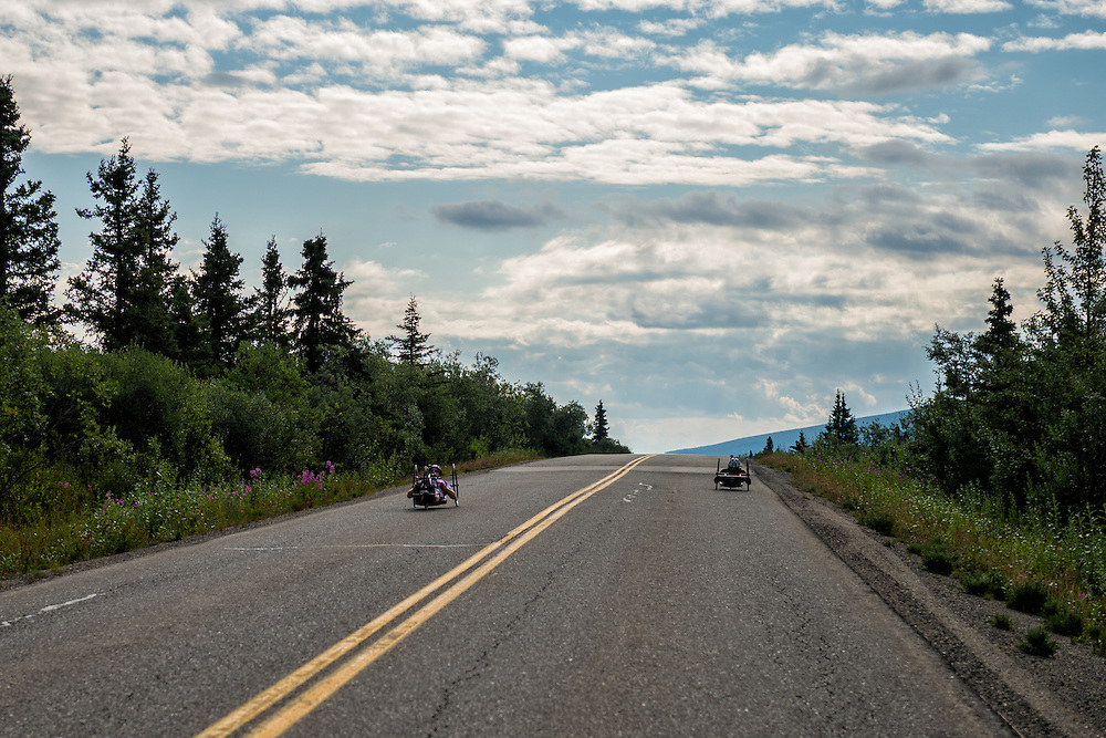 July 25, 2015: A pair of racers pass each other going opposite directions along Denali Park Road stage five of the 2015 Alaska Challenge handcycle race.