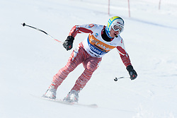 HARAUS Miroslav Guide:  ZATOVICOVA Maria, SVK, Super G, 2013 IPC Alpine Skiing World Championships, La Molina, Spain