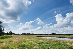 Ankeveen, Wijdemeren, Noord Holland, Netherlands