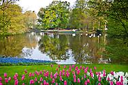 The central pond at Keukenhof Spring Tulip Gardens in Lisse, The Netherlands