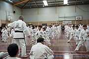 White Belts and Yellow Belts . . . at this rate, we may very soon need a much bigger hall.