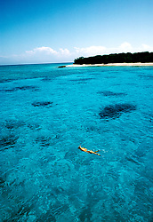 Australia, Great Barrier Reef, Lady Musgrave Island, Snorkeling, snorkeler, Photo: ausbri104.Photo copyright Lee Foster, 510/549-2202, lee@fostertravel.com, www.fostertravel.com