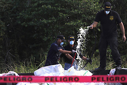 Members of the National Drug Control  of the Dominican Republic participate in a drug burning at the Pedro Brand municipality, in Santo Domingo, Dominican Republic,  (According to the DNCD, 3,240 kg of pure cocaine, 325 kg and 766 marijuana plants, 15 kg of heroin and 4 kg of crack were burned on Thursday. The drugs were seized in the past five months in Santo Domingo), December 20, 2012. Photo by Imago / i-Images...UK ONLY