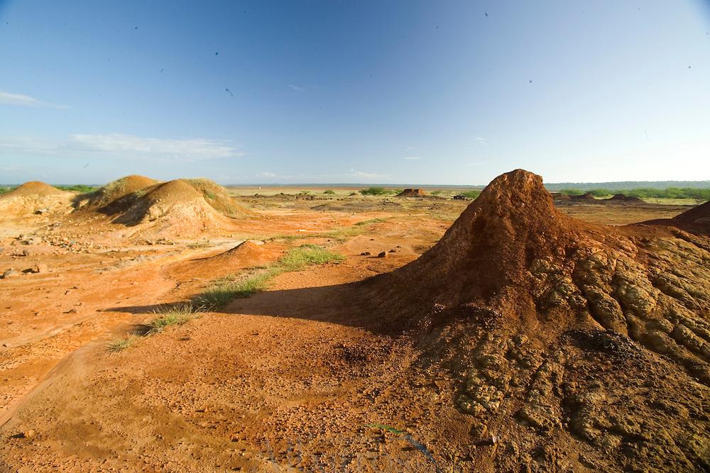El desierto del Sarigua, tambi&eacute;n conocido como el Parque Nacional Sarigua, est&aacute; ubicado en el distrito de Parita, Provincia de Herrera en Panam&aacute;. Tiene una superficie de 8 000 hect&aacute;reas y tambi&eacute;n es el &uacute;nico desierto de la Rep&uacute;blica de Panam&aacute;.1<br /> <br /> Este desierto tiene una antig&uuml;edad de m&aacute;s de 11 000 a&ntilde;os, el cual es una de las zonas m&aacute;s antiguas de Panam&aacute; y es considerado como una de las tierras m&aacute;s secas del pa&iacute;s.<br />  <br /> El desierto cuenta con una gran variedad de especies de flora como los manglares y el laurel. La fauna est&aacute; representada por los pel&iacute;canos, el alcedines y abundantes mariposas.<br /> &copy;Alejandro Balaguer/Fundaci&oacute;n Albatros Media.