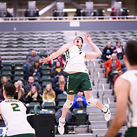 2nd year Right-Side hitter Matthew Aubrey (7) of the Regina Cougars in action during Men's Volleyball home game on November 18 at Centre for Kinesiology, Health and Sport. Credit: Arthur Ward/Arthur Images