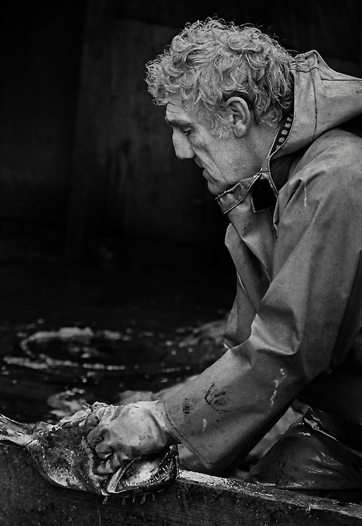PZ 198, the 'Aaltje Adriaantje'.<br />