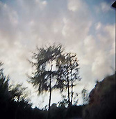 Nature/Color