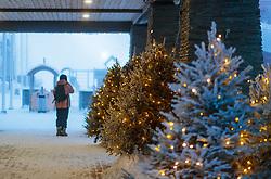 THEMENBILD - Weihnachtsbäume vor einem Hoteleingang mit Lichterketten, aufgenommen am 23. November 2017 in Ruka, Kuusamo, Finnland // Christmas trees in front of a hotel entrance with fairy lights, Ruka, Kuusamo, Finland on 2017/11/23. EXPA Pictures © 2017, PhotoCredit: EXPA/ JFK