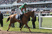 Winner Ornua ridden by Davy Russe goes down to the start for the l3.00pm The Doom Bar Maghull Novices' Steeple Chase (Grade 1) 2m during the Grand National Meeting at Aintree, Liverpool, United Kingdom on 6 April 2019.