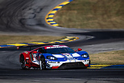 October 10-12, 2019: IMSA Weathertech Series, Petit Le Mans: #66 Ford Chip Ganassi Racing Ford GT, GTLM: Joey Hand, Dirk Mueller, Sebastien Bourdais
