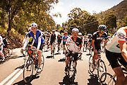 2014 Mt Buller Bunch