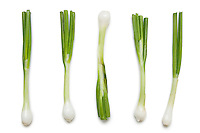 Fresh spring onions arranged over white background