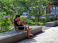 The park on Pier 14 along the East River Esplanade near Southstreet Seaport in New York City
