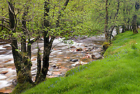The River Nevis, Glen Nevis Scotland