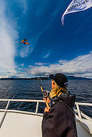 "A guide aboard the Un-Cruise ship ""Wilderness Explorer"" uses the line from a fishing rod to fly a kite with a GoPro camera attaached to take aerial photos, Stephens Passage, off Admiralty Island, Inside Passage, southeast Alaska USA."