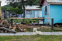 Street view from Villa O'Higgins, the southern most point on Carretera Austral, Chile