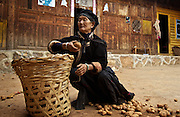 Li (surname) La Cuo, 66, who belongs to the musui minority, picks potatos at home near the legendary Lugu Hu Lake in Sichuan Province, southwestern China.