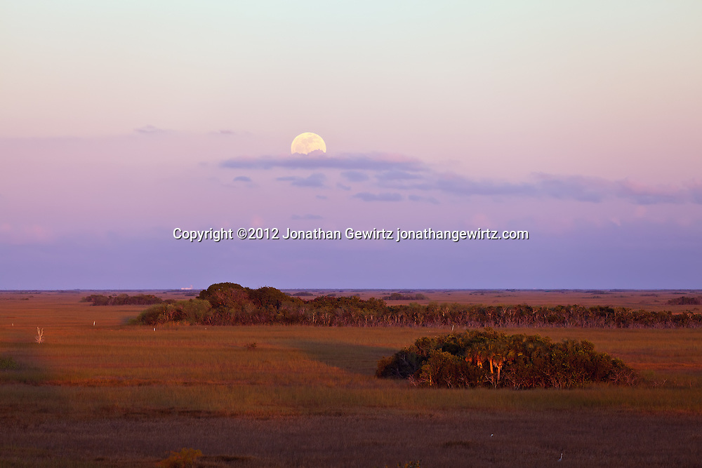 The full moon rises above the eastern horizon, opposite the setting sun, as seen from the Shark Valley observation tower in Everglades National Park, Florida on January 8, 2012. WATERMARKS WILL NOT APPEAR ON PRINTS OR LICENSED IMAGES.<br />