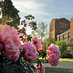 CMU Spring archive