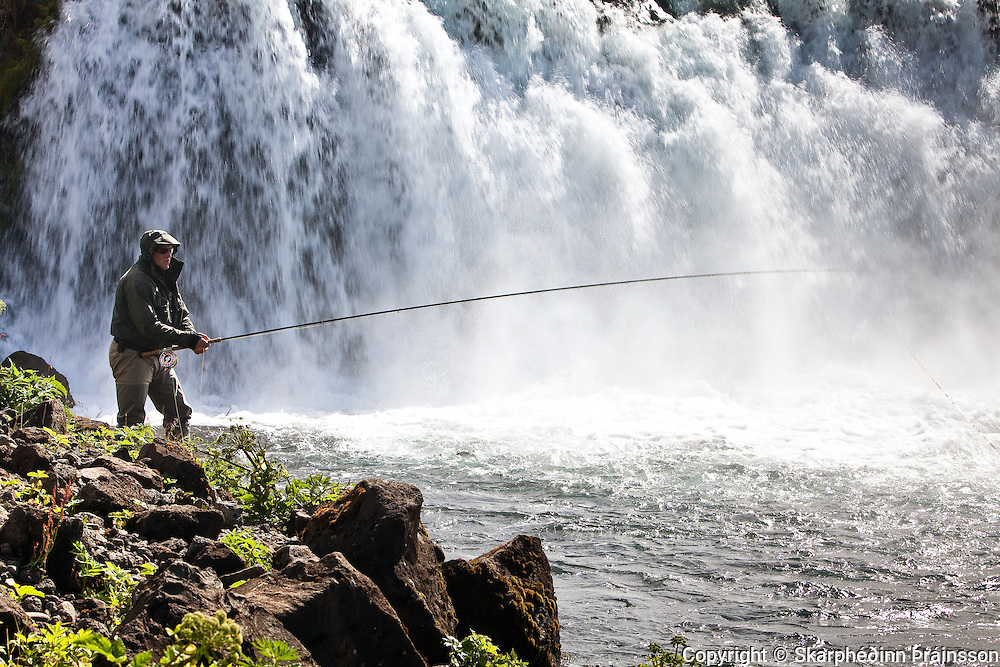 Angler casts for salmon by the waterfall Faxi in Biskupstungum, south west Iceland