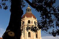 Baroque Italian Renaissance Architecture Style Dome of Pasadena City Hall Framed by Tree, Pasadena, California