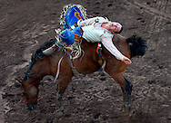 Tanner Phipps competes in the bareback bronc riding at the Benton Rodeo on Saturday night. 7/16/2016