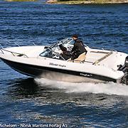Silver Eagle 650