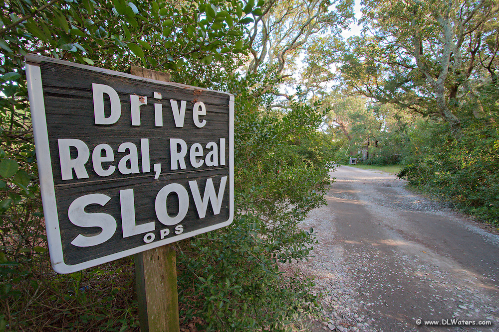 A picture of a funny sign found on a Oanoke Island back road.