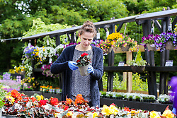 © Licensed to London News Pictures. 14/05/2020. London, UK. A woman in Capital Gardens in Alexandra Palace, north London after the government eased the COVID-19 lockdown, allowing garden centres to open after seven weeks. Photo credit: Dinendra Haria/LNP