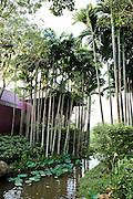 Reserve Villa.