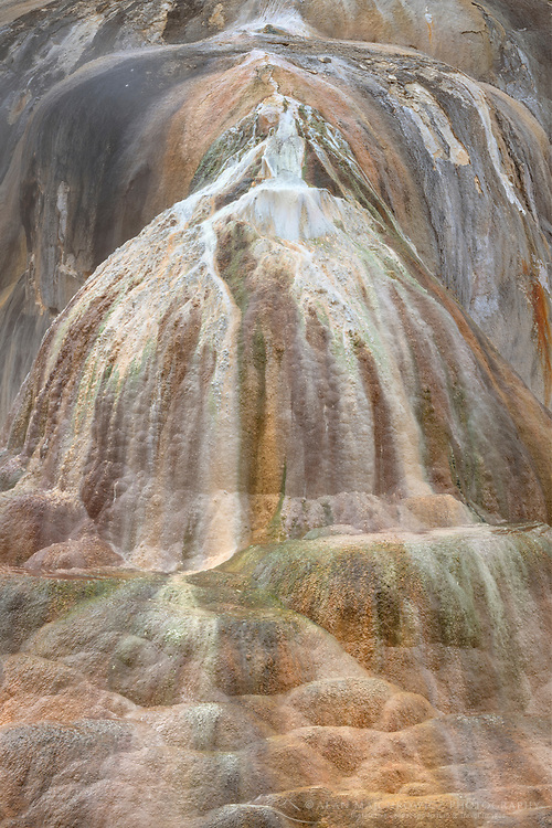Orange Spring Mound, made from desposits of travertine colored by thermophilic bacteria, Upper Terraces Mammoth Hot Springs, Yellowstone National Park