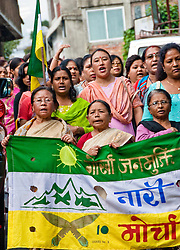 "While the trainees distribute consent forms, the chants of ""Gorkhaland! Gorkhaland!"" rise up from Pankhabari Road. Every day the protesters march and every day I feel a little more nervous. I read of this region's massive unemployment, illiteracy, poverty. I read of refugees and migrant workers, unstable borders and militant groups. The threat of violence looms as menacingly as the monsoon clouds."