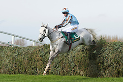 LIVERPOOL, ENGLAND - Thursday, April 8, 2010: Silver Adonis ridden by T Weston during the opening day of the Grand National Festival at Aintree Racecourse. (Pic by David Rawcliffe/Propaganda)